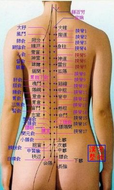 Pin by Lorrie Workman on Anatomy Acupressure Massage, Reflexology Massage, Acupuncture Points, Acupressure Points, Alternative Health, Alternative Medicine, Lymphatic Drainage Massage, Cupping Therapy, Health Heal
