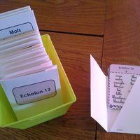 Chez Montessori, en orthographe, je me suis d'abord intéressée aux dictées muettes. Le problème est que ce genre de dictées est surtout utilisable en cycle 2. En effet, le principe est de...