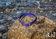 Waterproof Dog Collar in Bright Purple
