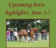 Top picks for the first week of June include cow horse events, dressage shows, equine breed shows, fundraisers and open houses, horse training clinics, hunter/jumper shows, schooling shows, speed shows/gymkhanas, trail obstacles, trail rides, and more.