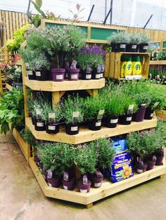 Homebase - Home Retail Group - Home Improvements - DIY - Design Centre - Concept Store - Layout - Landscape - Customer Journey - Visual Merchandising - www.clearretailgroup.eu