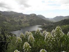 CAMINATAS EN GRAN CANARIA: Galería de fotos de caminata a las tres presas: Chira -Soria- Las Niñas Informa, River, Outdoor, Trekking, Photo Galleries, Outdoors, Outdoor Games, The Great Outdoors, Rivers