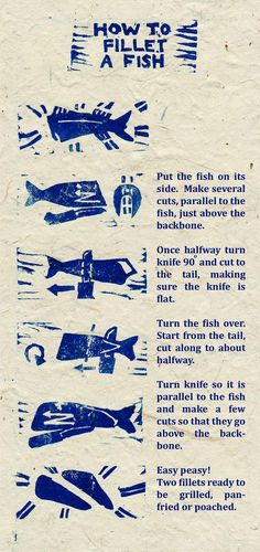 How to Fillet a Fish #cooking #food #infographic