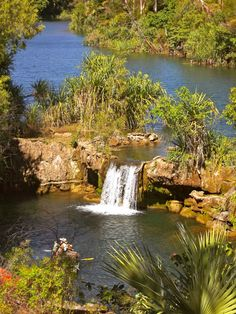 Lawn Hill National Park, Qld. An oasis in the wilderness!