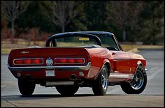 67 Shelby GT 500 Convertible