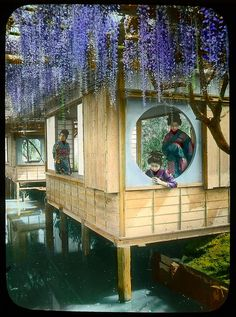 Wisteria over the window, and girls in a resting house, Tokyo Enami Studio Lantern Slide No : 406. About 1920's, Japan