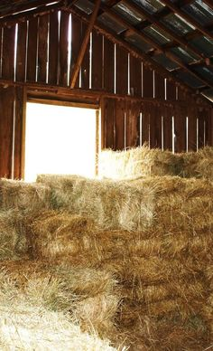 Hay In Barn Loft. I remember our whole family  taking turns swinging in the hay mow. Fun times, nice memories!