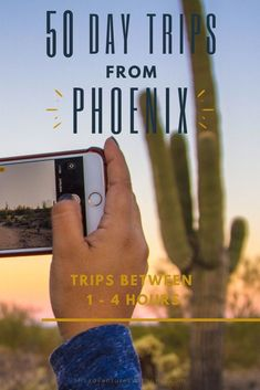Looking for a day trip from Phoenix that is between 1 to 4 hours away? Phoenix is the perfect central hub for a long list of Arizona day trips and I've got more than 50 of them for you to choose from! Visiting Arizona and take a day trips from Phoenix. This list of the best climbing, hiking day trips from Phoenix has something for everyone from Misadventures with Andi who was based in Phoenix for 2 years along with a few suggestions from others! Arizona Day Trips, Arizona Travel, Places To Travel, Travel Destinations, Visit Arizona, Usa Cities, Natural Bridge, 4 Hours, Usa Travel