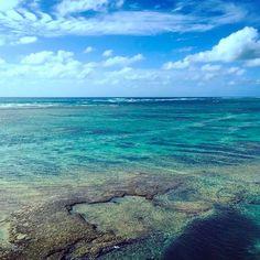 【mana.u1979】さんのInstagramをピンしています。 《* * 相変わらずの寒さだけど 昨日の夜からすこーし青空✨ * 早くあったかくなってほしいなぁ。 せめて明日明後日晴れて〜なぁ〜(^人^) * #沖縄 #okinawa #okinawa2017  #okinawalife #happylife  #沖縄フォト祭り  #沖縄好きな人と繋がりたい  #写真好きな人と繋がりたい  #ファインダー越しの私の世界  #lovers_nippon  #ダレカニミセタイソラ  #ダレカトミタイソラ  #sea #ocean #bluesky  #sun #sunshine #sunny  #photo #insta #instagood  #igphoto #ig_japan #igで繋がる空  #海  #青い海  #空  #太陽  #写真》