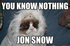 You Know Nothing Jon Snow Grumpy Cat Edition. - You Know Nothing Jon Snow Grumpy Cat Edition. (vía The Official Grumpy Cat) Meme Grumpy Cat, Cat Memes, Funny Memes, Grumpy Kitty, Funny Quotes, Khal Drogo, Game Of Thrones, Jon Snow Meme, Funny Cats