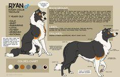 Ryan+Character+Sheet+2014+by+faithandfreedom.deviantart.com+on+@DeviantArt