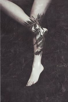 deceives: by Jessica Tremp the fern is one of my favorite natural forms