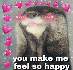 hi bubbsie this 4 u Cute Cat Memes, Cute Love Memes, Funny Memes, Crush Memes, 100 Memes, Heart Meme, Cartoon Memes, Relationship Memes, Mood Pics