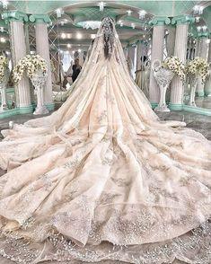 Elegant patterned veil and princess wedding gown. Princess Wedding Dresses, Dream Wedding Dresses, Bridal Dresses, Wedding Gowns, Wedding Dressses, Wedding Bells, Wedding Venues, Wedding Photos, Wedding Ideas