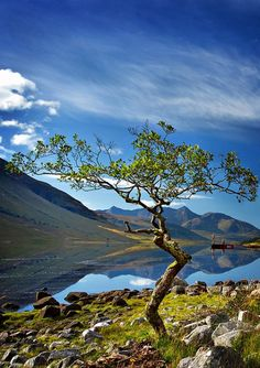 #bonitavista: Loch Etive Scotland photo via bonne