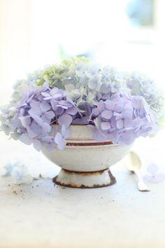Hydrangeas ...so pretty