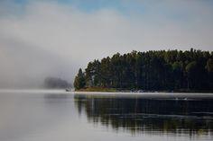 Skön morgon vid sjön... - http://www.wildlifephotographer.se/blog/2016/09/skon-morgon-vid-sjon/ #Dimma, #Morgon, #Orsasjön, #Sångsvan, #Sensommar Wildlifephotographer.se | Leif Bength