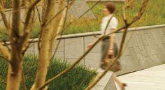 Zelkova Public Realm — Landworks Studio, Inc. Public Realm, Toyo Ito, Landscape, Studio, Design, City, Scenery, Studios