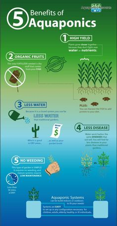 Hydroponics Gardening Supplementing your food budget has never been easier with an Aquaponics System. Far better than traditional gardening, these systems can provide more food in a smaller space . Aquaponics System, Hydroponic Farming, Hydroponic Growing, Fish Farming, Aquaponics Diy, Aquaponics Greenhouse, Vertical Farming, Growing Plants, Diy Hydroponik