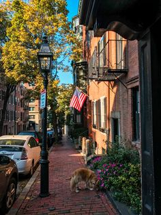Beacon Hill Neighborhood Guide: Exploring Boston's Historic Neighborhood // Brittany from Boston