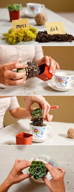 eco-friendly-wedding-favors-DIY-wedding-projects-centerpieces