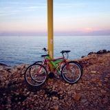 """#Concorso #GreenMarathon Tappa 1 Spostati #Green. Angela: """"Dodici chilometri e siamo al mare e che mezzo utilizzare per essere green? Le nostre #biciclette sempre pronte per partire."""""""