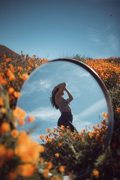 California poppies, california, mirror and butterfly HD photo by Jeremy Bishop ( on Unsplash