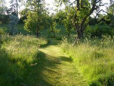 Sunset at Wardington - Ben Pentreath Inspiration Unique Garden, Natural Garden, Easy Garden, Meadow Garden, Garden Cottage, Landscape Design, Garden Design, Stone Garden Paths, Wild Flower Meadow