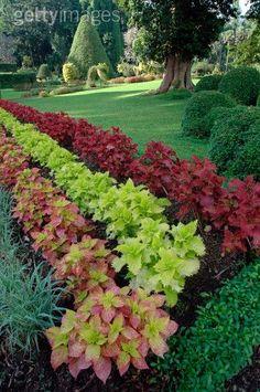 Outdoors Discover Garden art in the neighborhood. Front Yard Garden Design, Front Garden Landscape, Small Yard Landscaping, Small Front Yard Landscaping, Lawn And Landscape, Garden Yard Ideas, Lawn And Garden, Garden Art, Mulch Landscaping