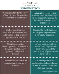 What is the difference between Genetics and Epigenetics? Genetics is the study of heredity and the variation of inherited characteristics; Science Education, Life Science, Gene Expression, Study Quotes, Endocrine System, Educational Websites, Biochemistry, Physiology, Critical Thinking