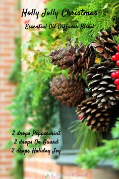 Holly Jolly Christmas Essential Oil Diffuser Blend. 2 drops of Peppermint, 2 drops of On Guard Protective Blend and 2 drops of Holiday Joy. I love this happy, festive and refreshing blend! Re-pin if you are in!