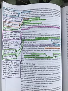 3 Way to Use Highlighters to Brighten Your Bible Bible Study Plans, Bible Study Notebook, Bible Study Tips, Bible Study Journal, Scripture Study, Scripture Journal, Bible Highlighting, Matthew Bible, Bible Notes