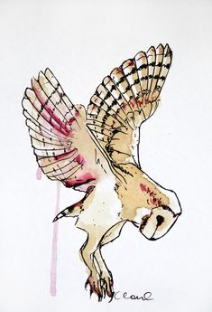 Barn Owl Art . Could be a tattoo.