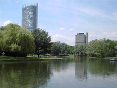 Rheinauenpark in Bonn