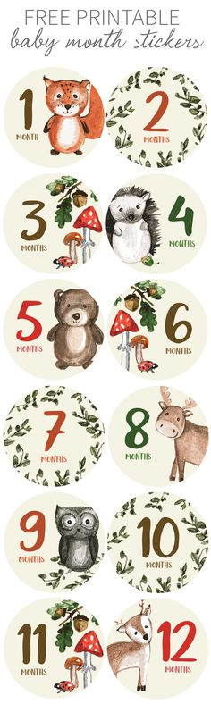 FREE PRINTABLE Make sure you capture your baby's progress each month with our printable woodland creature cards.#woodlandnursery #babymilestone #freeprintable #babyprintable