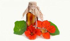 Jak posílit imunitu v době chřipkové epidemie - Vitalia. Plant Hanger, Korn, Life Is Good, Smoothie, Herbs, Homemade, Health, Plants, Bronchitis
