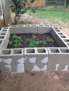 """My """"Pinterest"""" garden we made yesterday....cost: 20 Cinder Blocks $37,  6 bags Miracle Grow Potting soil (on sale) $52. We did ours double the height so the pups wouldn't reach in and play with the plants."""