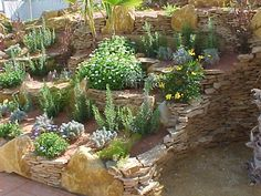 Un jard n mediterr neo foto principal jardines for Ver gris potager