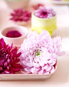 Bloementrend   Zomerse bloemen Mold Spray, Organic Supplies, Leaking Pipe, Cleaning Items, Ice Crystals, Concrete Wall, Mold And Mildew, Candle Holders, How Are You Feeling