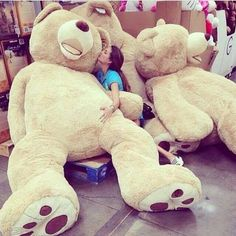 Depends on the teddy bear ... honestly I'm not sure. I've never actually had one. Of either.