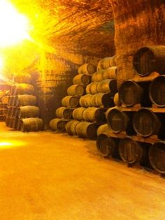 Visita a Destilerías Altosa y Bodegas Verum   entomelloso.com: