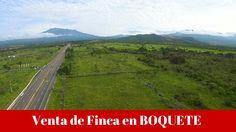Venta de Finca 7 HA en Boquete frente a la Vía Boquete . Prestige Panama...