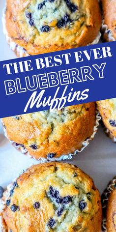 The Best Easy Jumbo Blueberry Muffins Recipe - Sweet Cs Designs Jumbo Blueberry Muffin Recipe, Homemade Blueberry Muffins, Simple Muffin Recipe, Blueberry Desert Recipes, Recipes With Blueberries, Best Muffin Recipe, Blueberry Bread Recipe, Blueberry Streusel Muffins, Blueberries Muffins