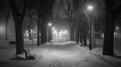 Animated gif shared by Lucy . Find images and videos about gif, black and white and winter on We Heart It - the app to get lost in what you love. Winter Love Quotes, Imagenes Gift, Snow Gif, Foto Gif, Relaxing Gif, Les Gifs, Sent Bon, I Love Snow, Snow