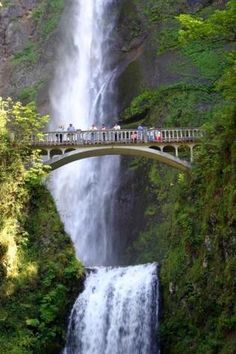 Multnomah Falls, OR, just off the Columbia River.  An absolutely beautiful place (been there)