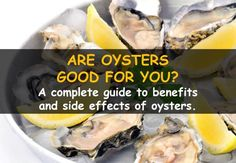 Are oysters good for you?