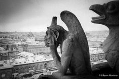 Gárgulas de Notre Dame