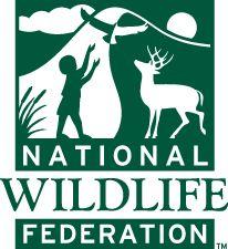 ORGANIZACIONES MUNDIALES PARA LA PROTECCION DEL MEDIO AMBIENTE  WWF: World Wide Fund for Nature (Fondo Mundial para laNaturaleza), es la más grande y respetada organización conservacio…