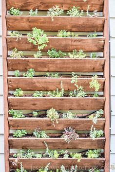 Learn to build a DIY vertical garden for herbs succulents or other plants with this easy step-by-step tutorial! This is the perfect way to dress up a wall fence or side of a building. Decor Style Home Decor Style Decor Tips Maintenance Vertical Succulent Gardens, Vertical Garden Wall, Succulent Landscaping, Succulents Garden, Succulent Wall Diy, Verticle Garden, Vertical Planting, Wall Trellis, Garden Trellis