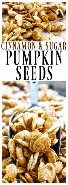 Oven baked CINNAMON SUGAR PUMPKIN SEEDS make a delicious fall treat in under an hour. Cinnamon Sugar Pumpkin Seeds will surely become a favorite Halloween snack, turning your pumpkin seeds into little churro bites. Cinnamon Sugar Pumpkin Seeds, Easy Pumpkin Seeds, Flavored Pumpkin Seeds, Perfect Pumpkin Seeds, Toasted Pumpkin Seeds, Pumkin Seeds, Cooking Pumpkin Seeds, Pumpkin Seed Recipes Baked, Best Pumpkin Seed Recipe